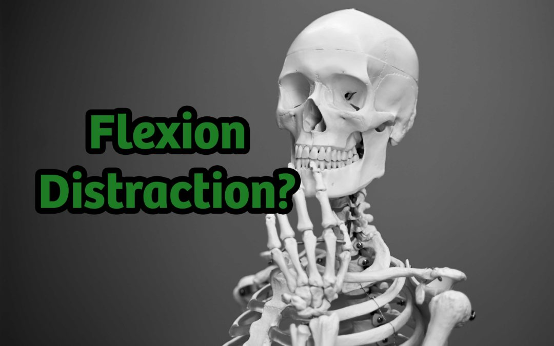 [Seminar Series] New Toy – Flexion Distraction